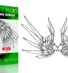 vector_and_brush_wings_vol_4