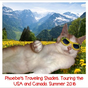 We Pawticipawted In Phoebe's Traveling Shades