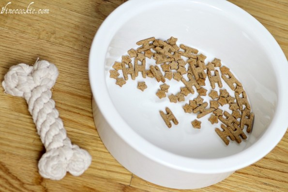 puppy retriever british cream golden adorable dog peanut butter, milk, whole wheat flour, baking powder home made dog treats biscuits cookies dog food