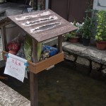 A self service farmer's market box along the Furukawa river. Charming doesn't even begin to cover this