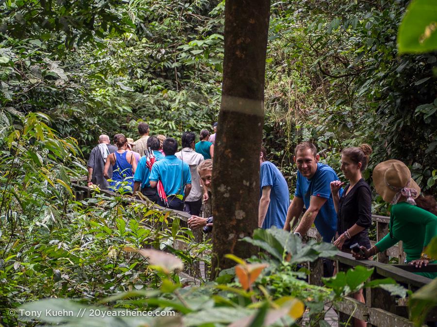 Crowds at Sepilok Orangutan Rehabilitation Center