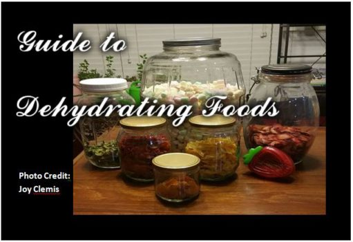 Guide to Dehydrating Foods1