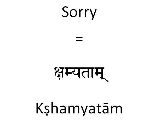 How to say sorry in Sanskrit