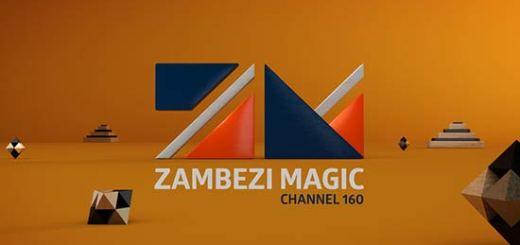Zambezi_logo_board