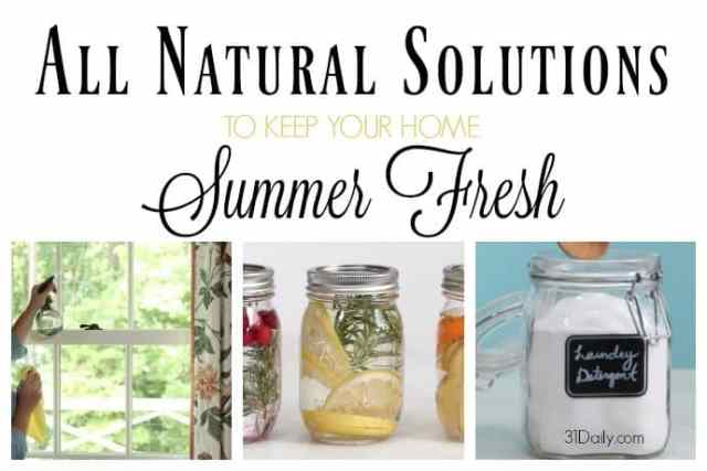 All Natural Solutions to Keep Your Home Summer Fresh