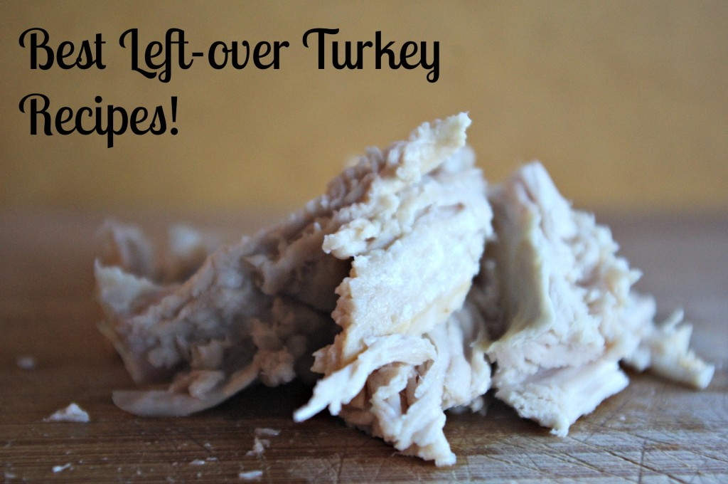 Leftover Turkey Recipes That Will Make You Want MORE TURKEY