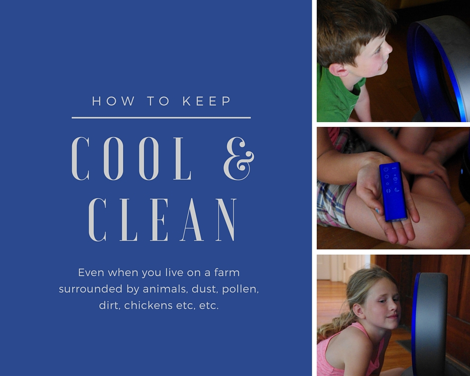 Keeping Cool & Clean on the Farm With Dyson Pure Cool