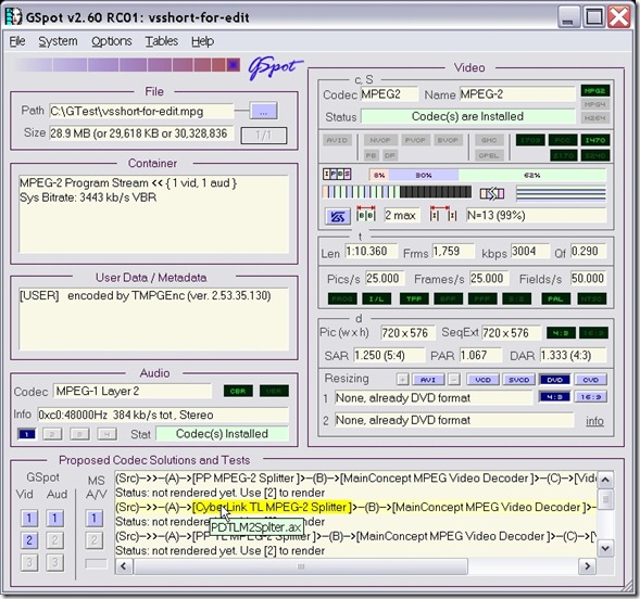 GSpot codec identifier