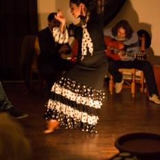 Flamenco-9929