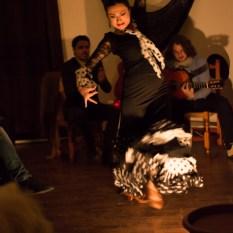 Flamenco-9932