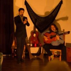 Flamenco-9945
