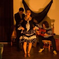 Flamenco-9947