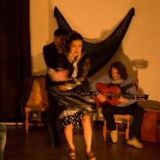Flamenco-9969