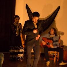 Flamenco-9982