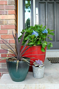 Small Of Home Depot Container Garden