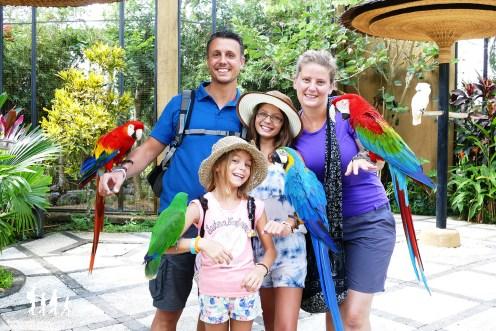 Bali-Bird-Park (38) copie