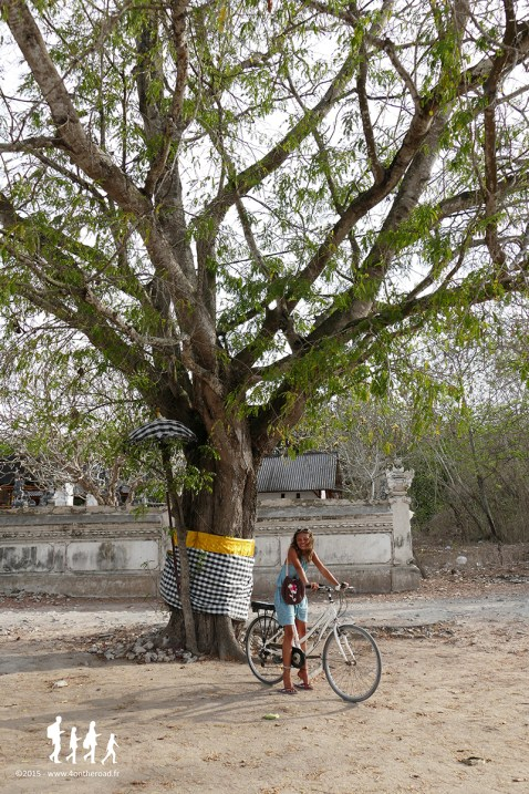 Bali-Lembongan (167)