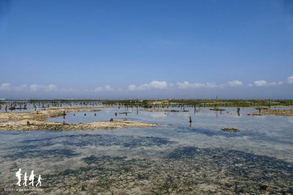 Bali-Lembongan (5)