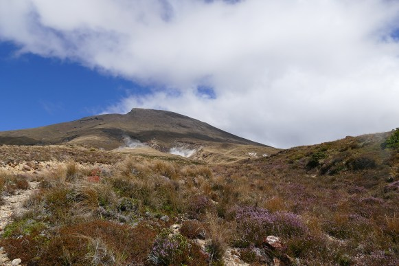 nouvelle-zelande-roadtrip-tongariro-alping-crossing (47)