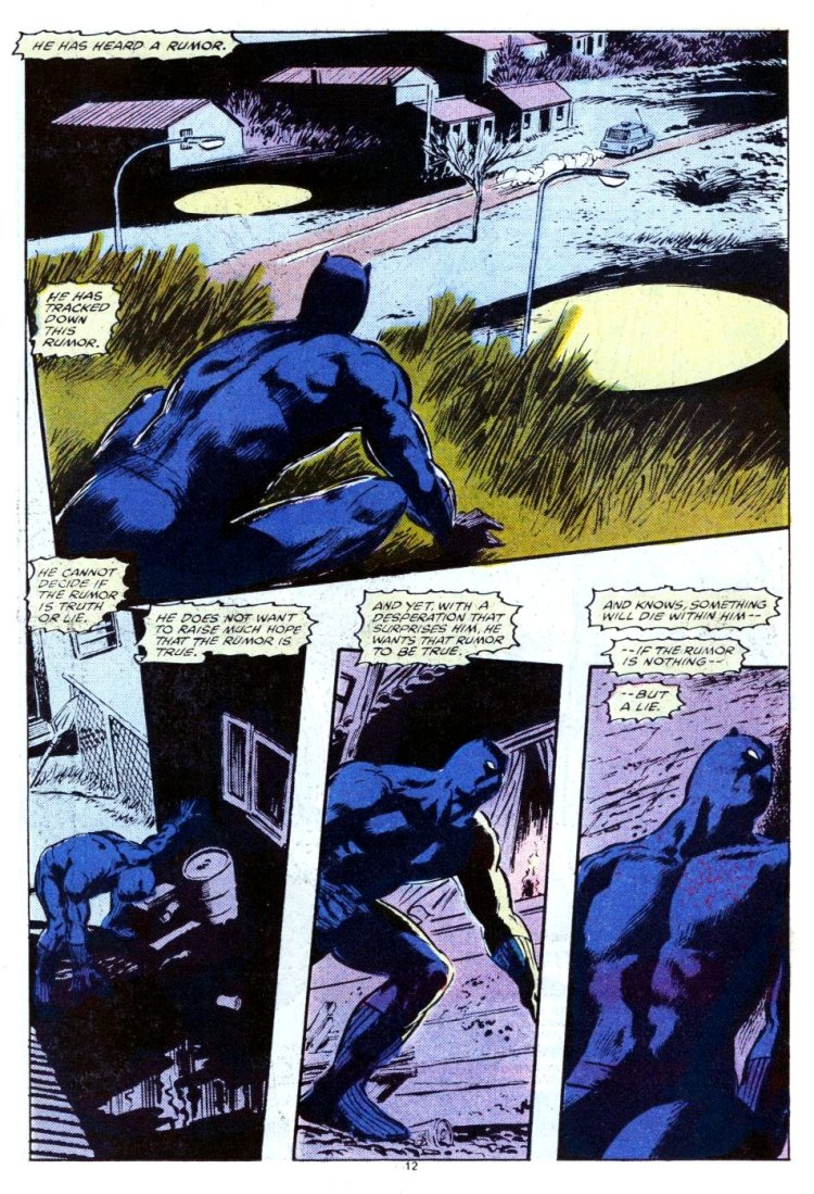 Panther's Quest by Don McGregor and Gene Colan