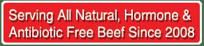 Hormone and Antibiotic Free Beef Burgers