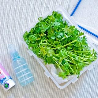 How to Keep Fresh Herbs Longer-1