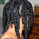 twists on fine hair