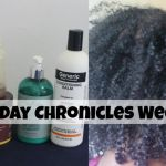 wash day for fine natural hair
