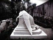 fallen_angels