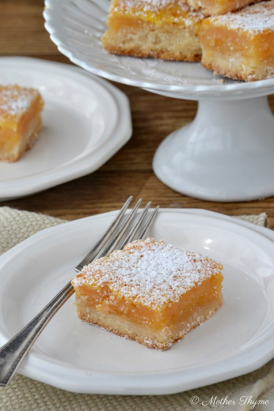 Blood Orange Citrus Bars | www.motherthyme.com