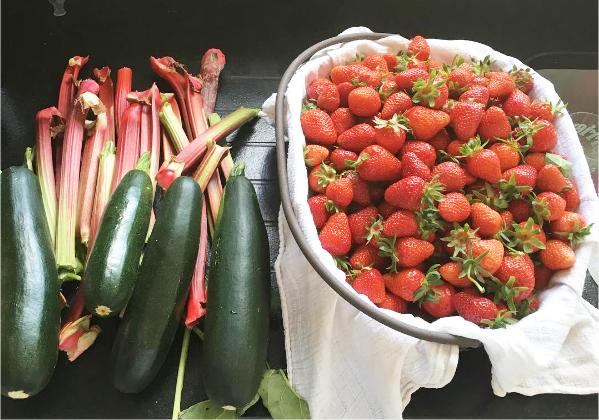 Cueillettes de fruits et légumes