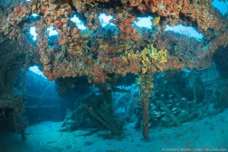 The inside of the Mitzpah ship wrekc