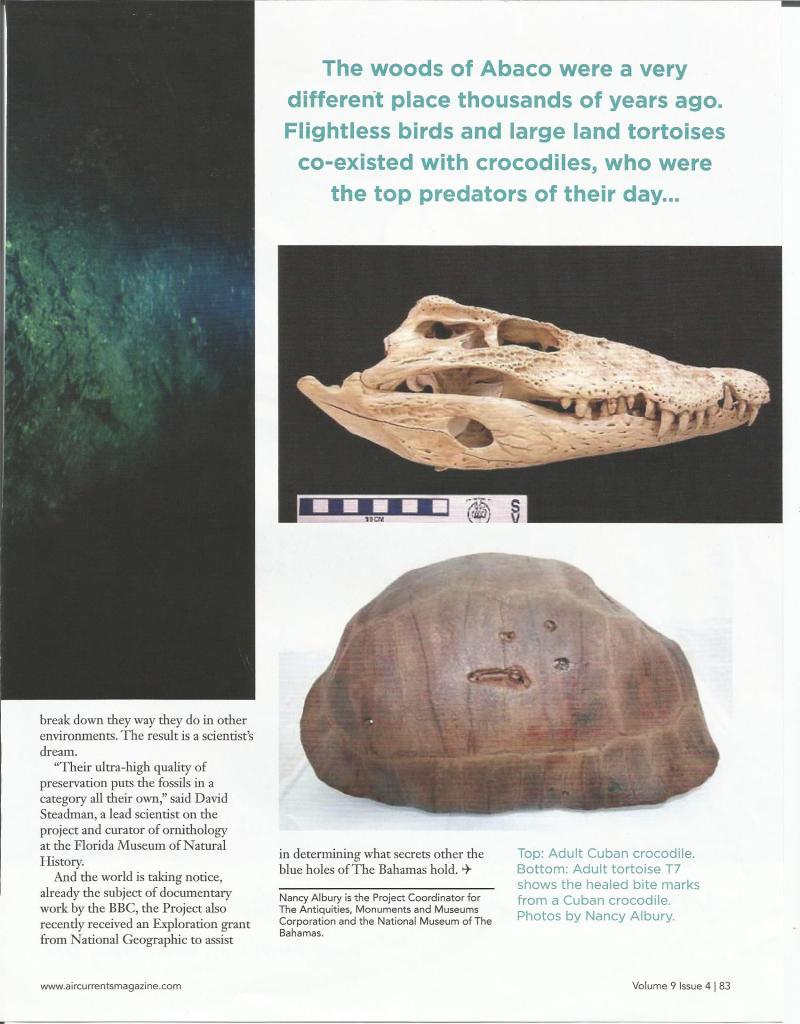 PAGE 6 - LAST