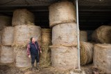 Dairy farmer Michael Perkins with bales of donated hay