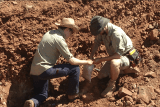 Two men take samples from rock and dirt in the Pilbara