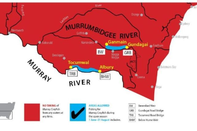 Red map of NSW showing areas where fishing is allowed for Murray crayfish.