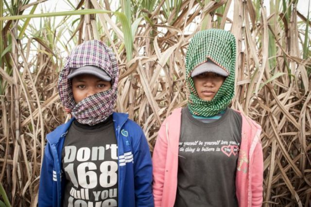Two female Cambodian sugar cane workers.