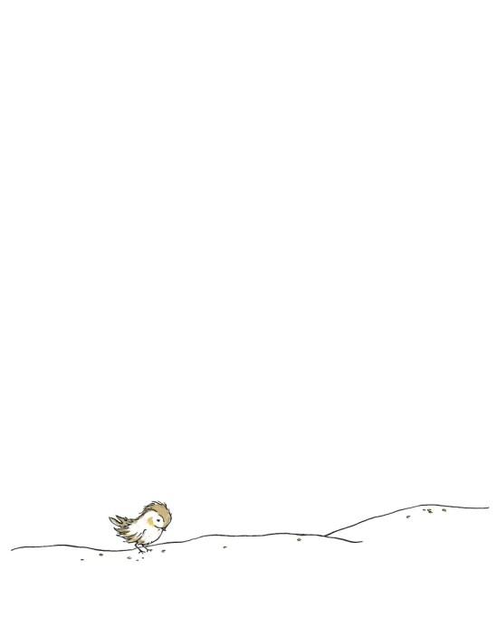 Loner bird