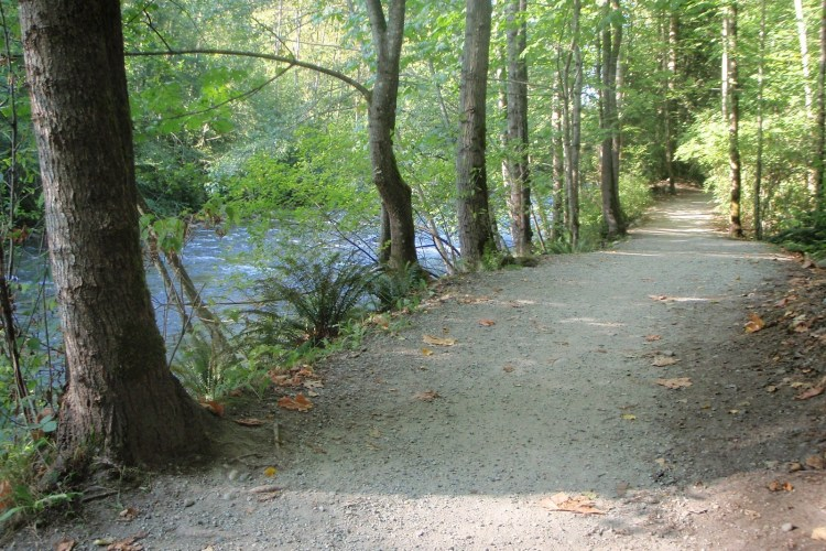 Coquitlam River, PoCo Trail