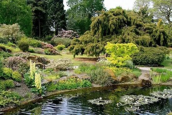 Royal Botanic Garden  -  Edinburgh, UK