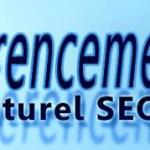 web-referencement-naturel-seo