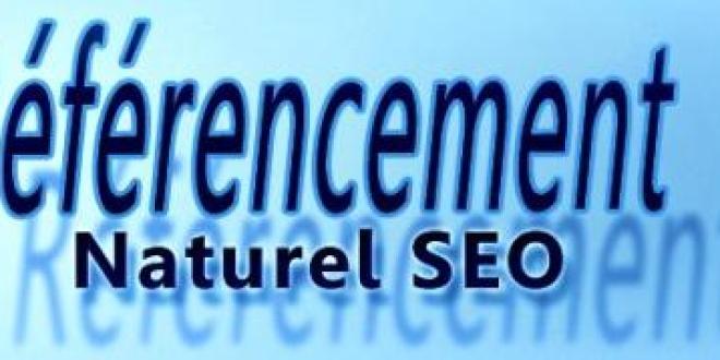 web-referencement-naturel-seo