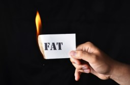 fatburn 3