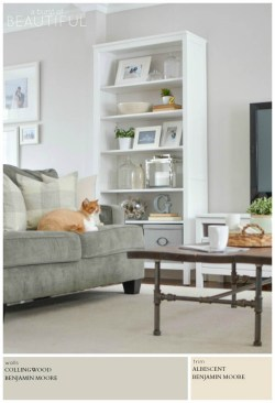 Small Of Benjamin Moore Pale Oak