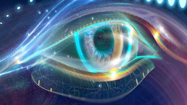 The Biocrystal- Holographic Properties Of DNA Crystaline-eye