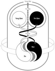 8 vessels yin yang