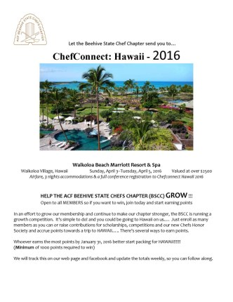 Hawaii Contest_Page_1