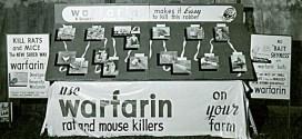 Varfarin ile ilişkili İntrakraniyal Kanama korkusu gerçek mi?