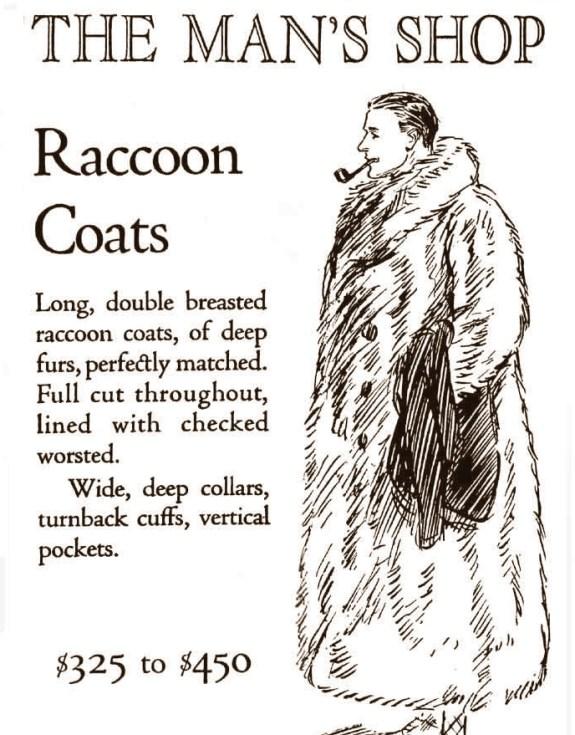 Raccoon3