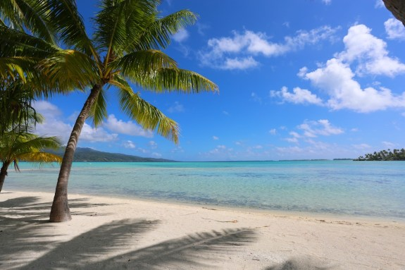Vahine_island_19